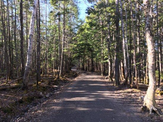 Lower Sackville, Canada: photo4.jpg