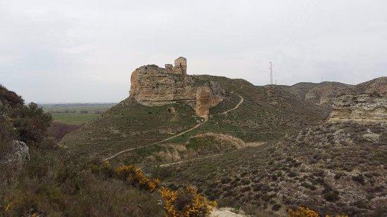Galacho de Juslibol