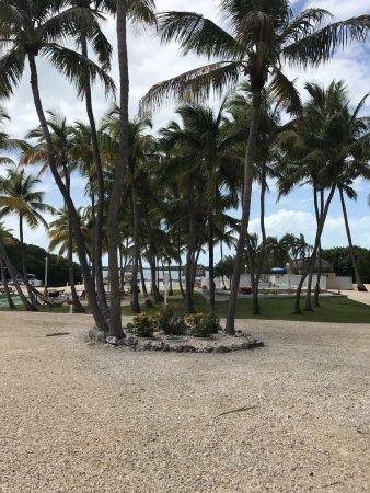 Kon-Tiki Resort: photo2.jpg