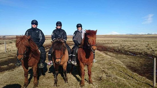 Orion and friends. A wonderful experience and Icelandic Horseworld.
