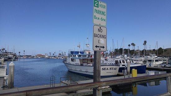 Days Inn Oceanside: Harbor view!