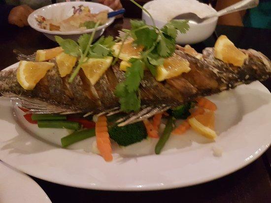 White jasmine thai cuisine cranbourne restaurant for Jasmine cuisine