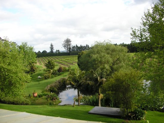 Marsden Estate Winery : the view from the terrace overlooking the lake