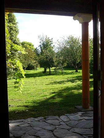 Pohara, New Zealand: Garden view from room