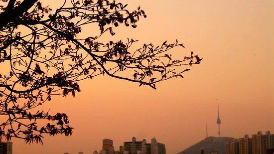 Namsan Tower taken from Hangang Park. Sunset, October 2015
