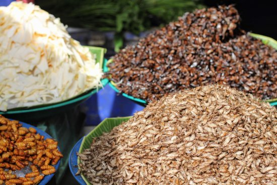 Khlong Toei Market: insects for sale at the market
