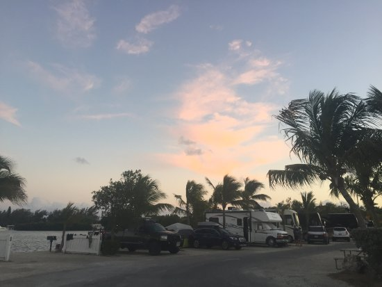 Boyd's Key West Campground: photo2.jpg