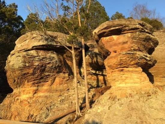 Shawnee National Forest Illinois 2019 What To Know