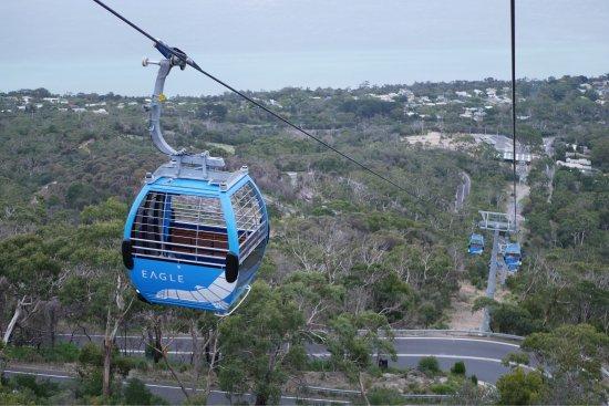 Arthurs Seat, Australien: photo2.jpg