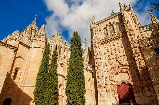 Private Tour to Avila and Salamanca...