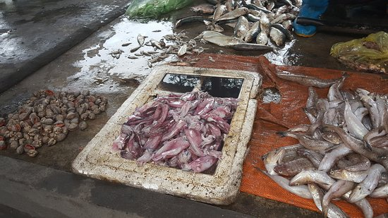Province de Quang Ninh, Vietnam : The market tour