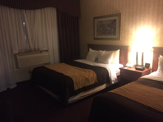 Comfort Inn Toronto Airport: photo0.jpg