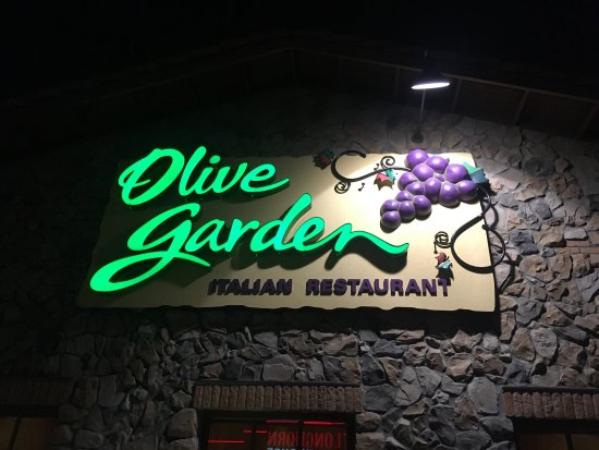Always a complimentary house salad - Picture of Olive Garden ...