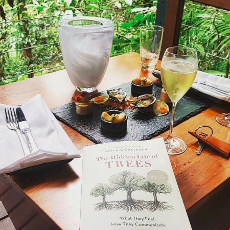 Mossman, Australia: Champagne and canapes