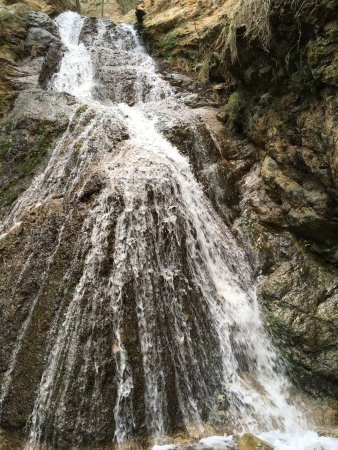 Rancho Oso RV & Camping Resort: photo1.jpg