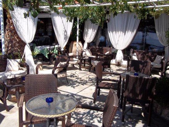 Loutraki, Grecja: ΤΟ ΜΠΑΡ ΔΙΠΛΑ ΣΤΗΝ ΤΑΒΕΡΝΑ