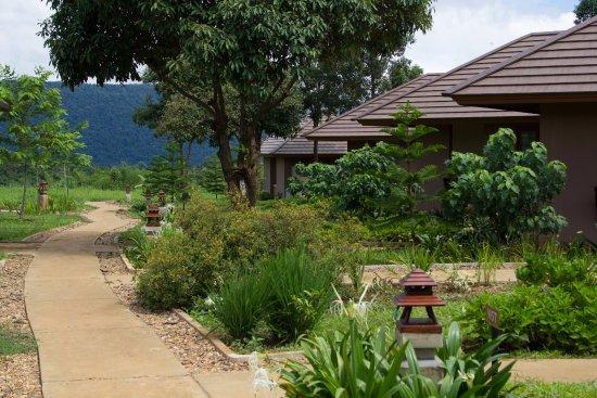 Paksong, Laos: Pathway