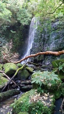 Owaka, Nieuw-Zeeland: Matai Falls