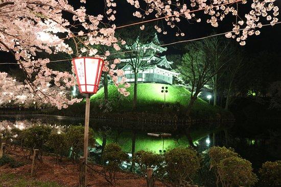 Joetsu Picture