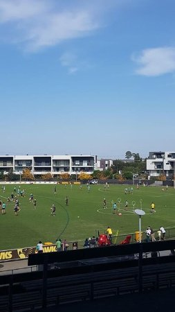 Mulgrave, Australia: great view of Hawthorn training ground