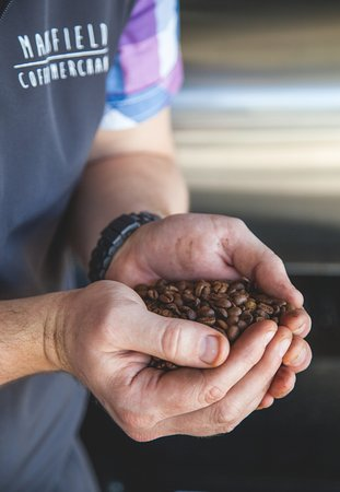 Mansfield, ออสเตรเลีย: Purchase some house roasted beans to take home