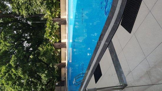 Shivalik View: TA_IMG_20170420_122550_large.jpg