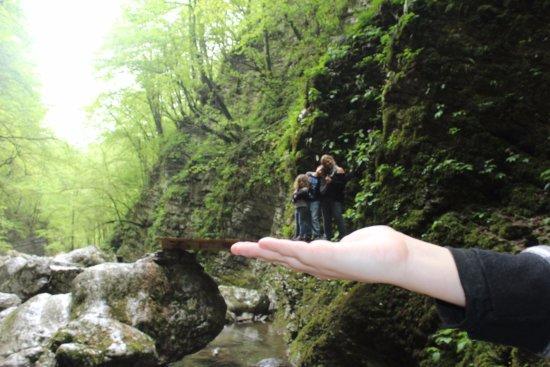 Kozjak Waterfalls: גשרוני עץ במסלול