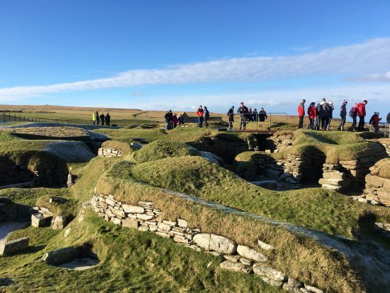 Red's Orkney Tours