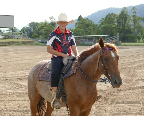 Tully, Australia: We have quality trained horses