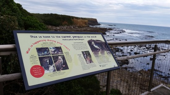 Waikawa, New Zealand: yellow eyed penguin sign