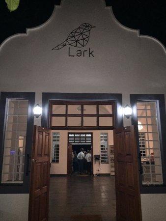 Lark Cafe: The new Lark!