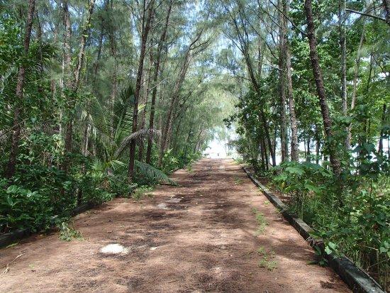 ココス アイランド リゾート , 遊歩道がありジャングル内を散歩できますが、暑いです