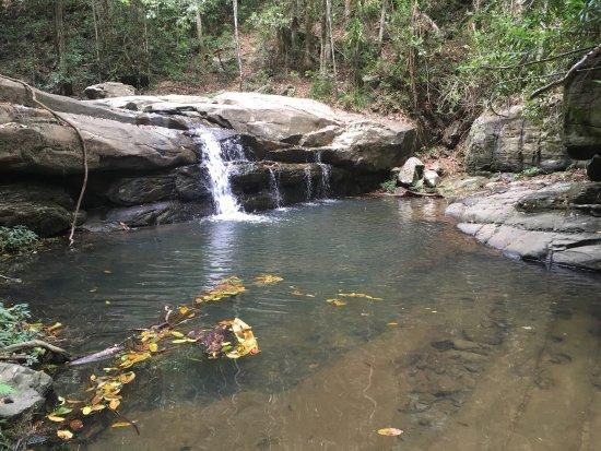 Buderim, ออสเตรเลีย: photo1.jpg