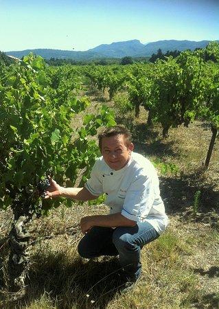 Violes, Fransa: Le chef dans les vignes de la propriété