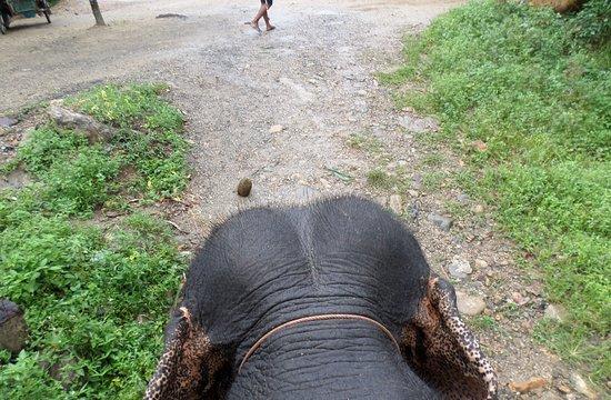 Phangnga, Tajlandia: View from the top :D