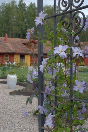 Nyköping, İsveç: Gate into rose garden