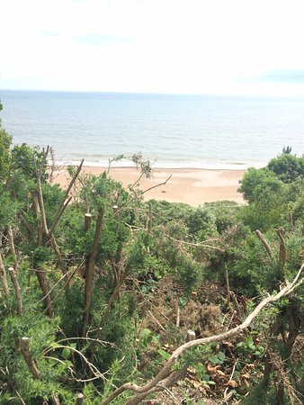 Highcliffe, UK: A view on the nature trail