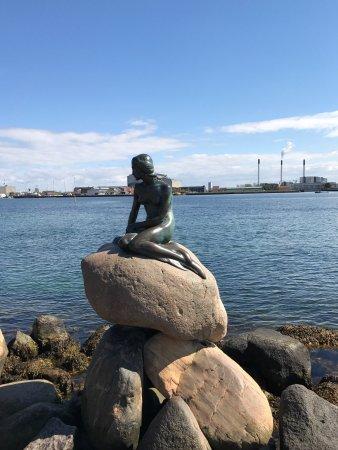 Bike Copenhagen with Mike: photo4.jpg