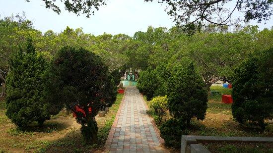 Qiu Mao Orchard