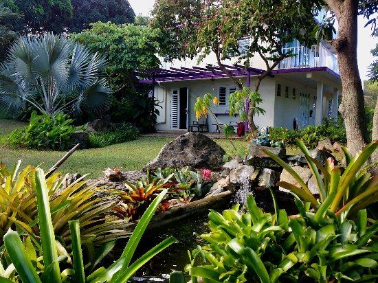 Review Of Enchanted Garden Inn, Isla De Vieques, Puerto Rico   TripAdvisor