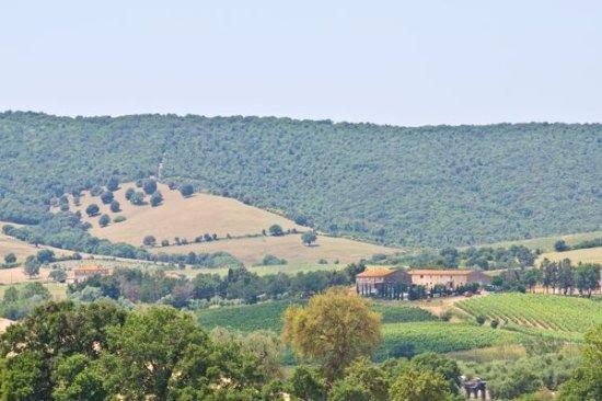 Montiano, Italy: vista panoramica centro aziendale