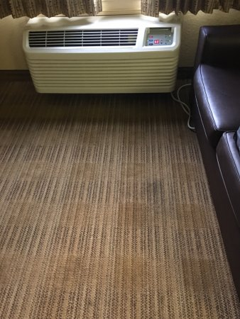 Carpet Water Stains