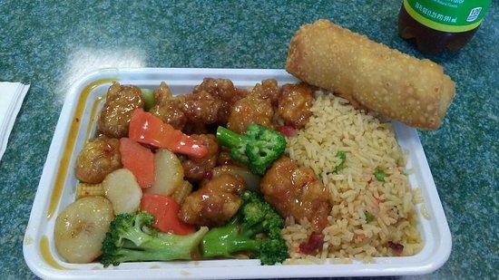 Enola, Pensilvania: My Yummy General Tso Combination Dinner!
