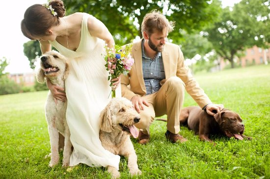 Magaliesburg, South Africa: pet-friendly weddings