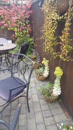 Cottingham, UK: Lovely patio area (dog friendly)