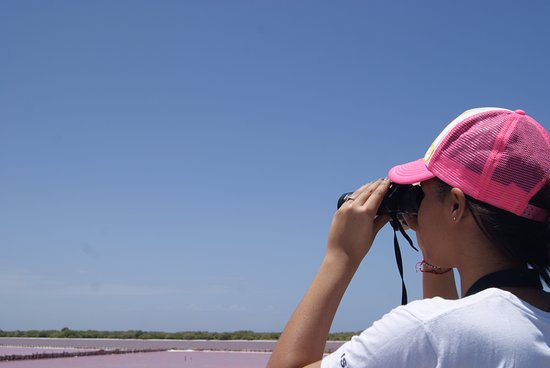 Bani, Den dominikanske republikk: Observacon de Aves.