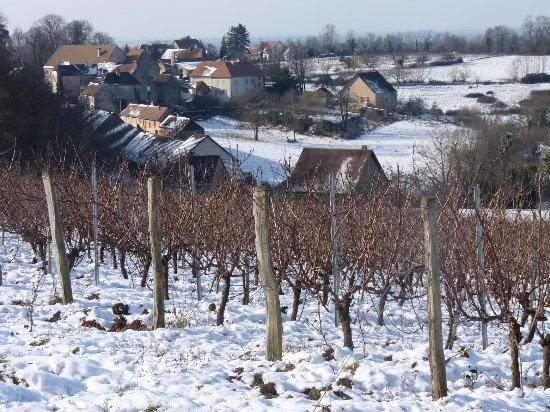 Le village viticole de Mantry en février