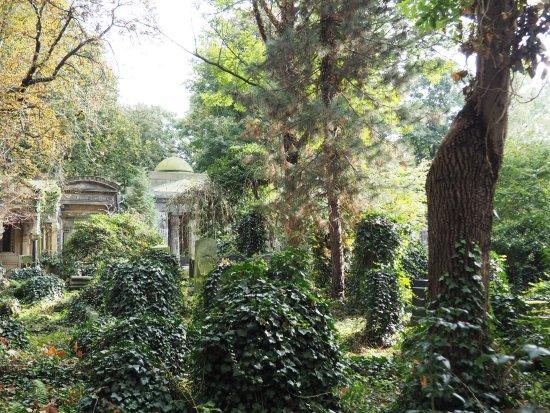 Historic Jewish Cemetery