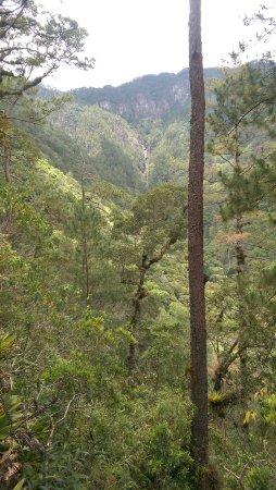 Gracias, Honduras: Parque Nacional Celaque