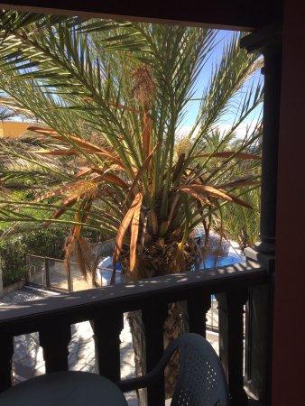 Punta marina hotel reviews price comparison valle for Apartamentos jardin del conde valle gran rey la gomera
